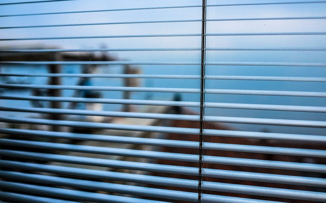 A Comprehensive Guide to Blinds: Treating Your Windows Right